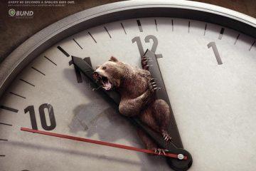 保护动物公益广告 每一分每一秒他们都在消亡