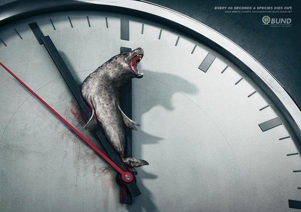 《保护动物公益广告 每一分每一秒他们都在消亡》