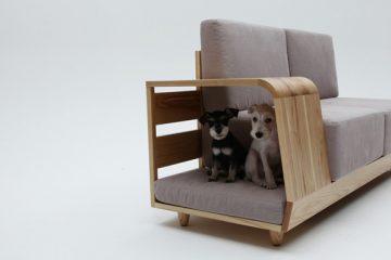 主人与宠物都可以温馨享受的沙发