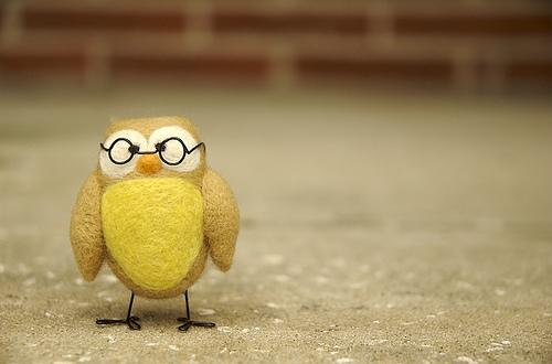《毛茸茸的可爱手工毡布小鸟 手工DIY布偶》