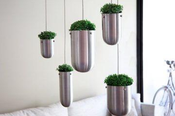 """在家中打造""""空中花园"""" 让植物悬浮在空中"""