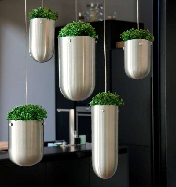 """《在家中打造""""空中花园"""" 让植物悬浮在空中》"""