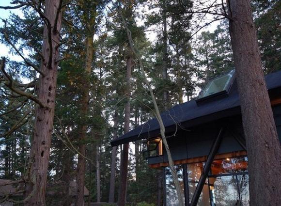 《豪华小木屋别墅设计 让你住在丛林眺望大海》