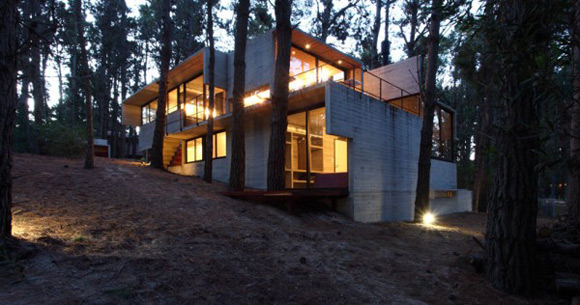 《松树林中的现代感豪华别墅》