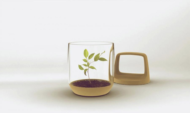 《Green Lantern玻璃和植物的创意结合》