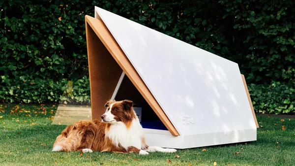 《高科技噪音消除狗舍噪音,给狗狗一个好的睡眠》