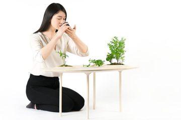 你会爱上了这个可以养植物的茶桌