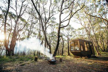 自由移动的舒适小木屋让你享受森林的第一抹阳光